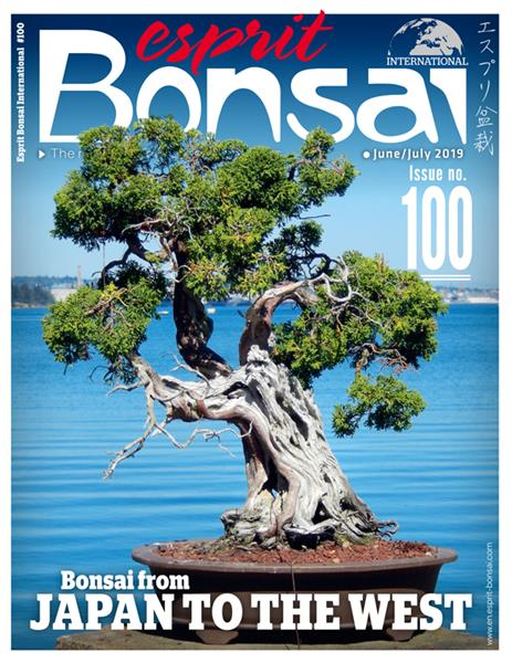 Esprit Bonsai International #100 - Digital version only