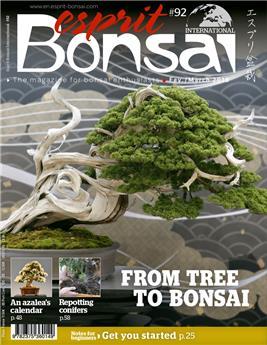 Esprit Bonsai International #92