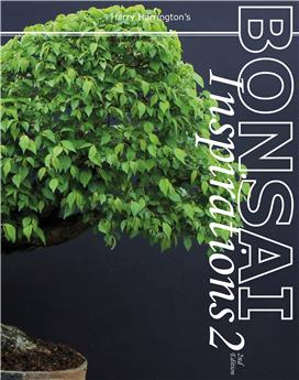 Bonsai Inspirations 2