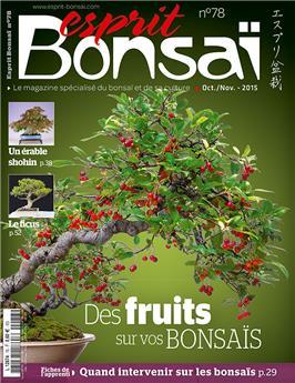 Esprit-Bonsaï n° 078