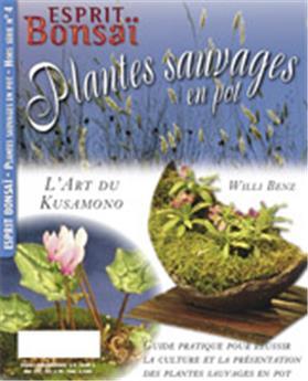 HS04 Plantes sauvages en pot, l'art du kusamono