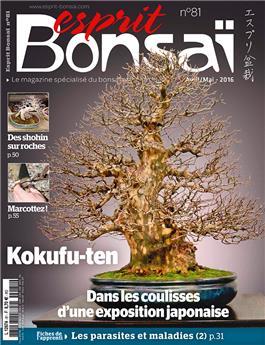 Esprit-Bonsaï n° 081