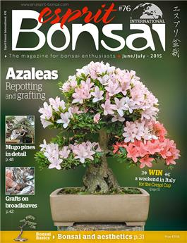Esprit Bonsai International #76 June-July 2015