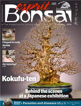 Esprit Bonsai International #81 April-May 2016