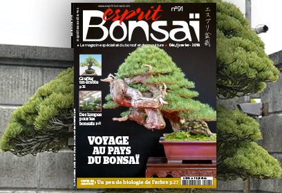 Esprit Bonsaï n°91 Décembre-Janvier 2018  Voyage au pays du bonsaï
