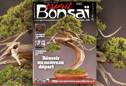 Esprit Bonsaï n°93 Avril-Mai 2018 Réussir un nouveau départ