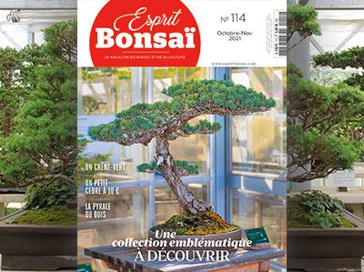 Esprit Bonsaï n°114 Octobre-Novembre 2021 - Une collection emblématique à découvrir
