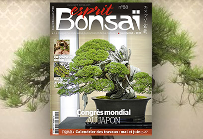 Esprit Bonsaï n°88 Juin-Juillet 2017 - 8e World Bonsai convention au Japon